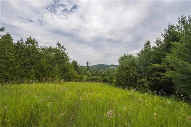 Vacant Land at Lt13 Banta Rd, Trent Hills, Ontario. Image 4