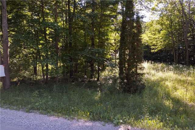 Vacant Land at Pt Lt15 Concession 5 Rd N, Meaford, Ontario. Image 2