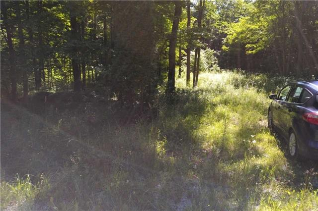 Vacant Land at Pt Lt15 Concession 5 Rd N, Meaford, Ontario. Image 3