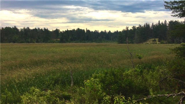 Vacant Land at 190 Langlois Rd, St. Charles, Ontario. Image 3