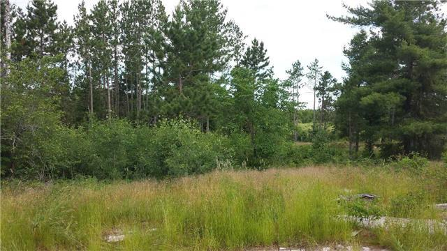 Vacant Land at 190 Langlois Rd, St. Charles, Ontario. Image 5