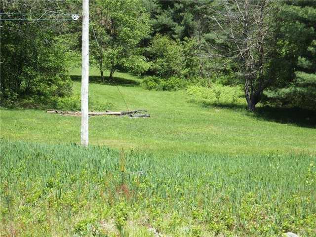 Vacant Land at Lot 8 Bobcaygeon Rd, Minden Hills, Ontario. Image 5