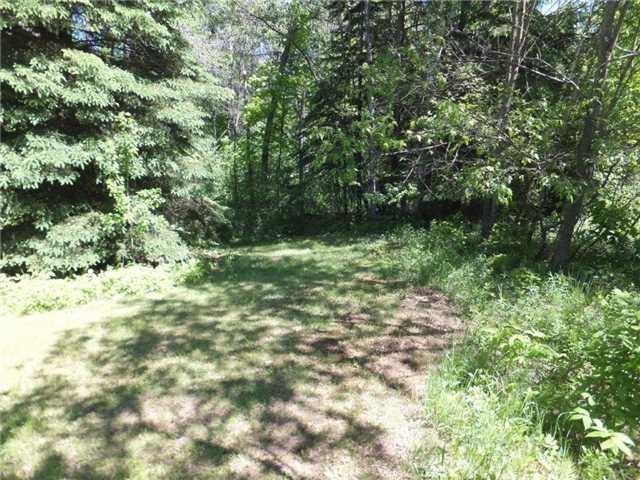 Vacant Land at Lot 8 Bobcaygeon Rd, Minden Hills, Ontario. Image 6