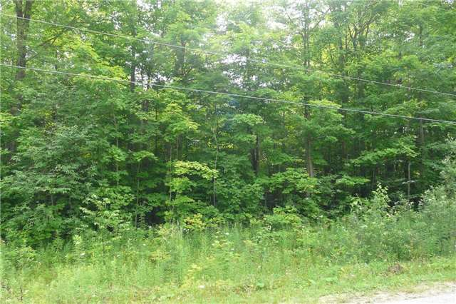 Vacant Land at Pt Lt19 Christie St, Southgate, Ontario. Image 1