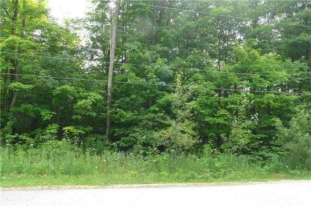 Vacant Land at Pt Lt19 Christie St, Southgate, Ontario. Image 2