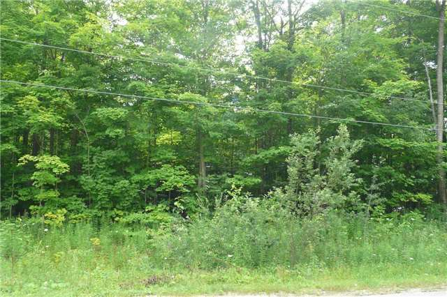 Vacant Land at Pt Lt19 Christie St, Southgate, Ontario. Image 3