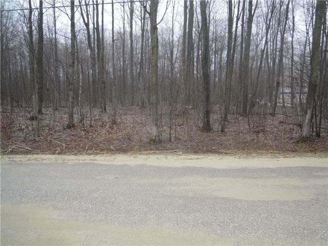 Vacant Land at Pt Lt19 Christie St, Southgate, Ontario. Image 4