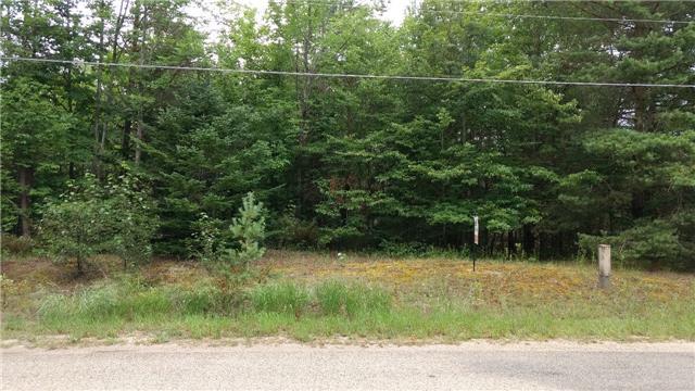 Vacant Land at 653 6th Street North St E, South Bruce Peninsula, Ontario. Image 3