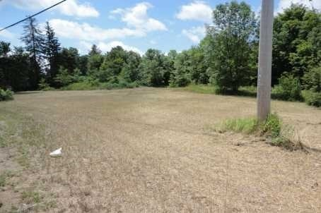 Vacant Land at Lot 22 Flinton Rd, Addington Highlands, Ontario. Image 12