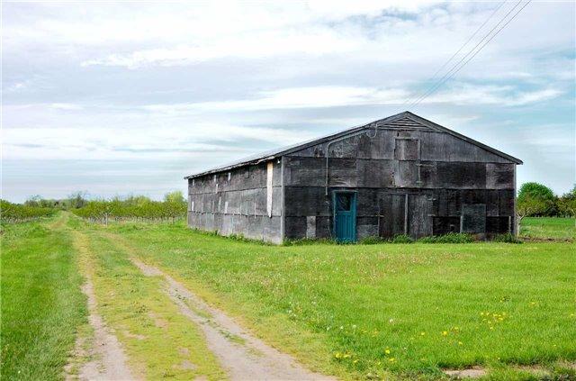 Farm at 4465 John St, Lincoln, Ontario. Image 9