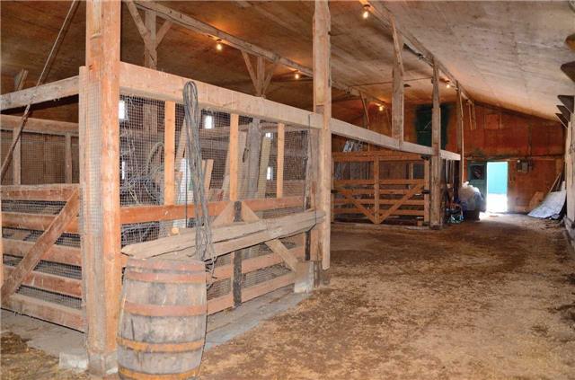 Farm at 4465 John St, Lincoln, Ontario. Image 10
