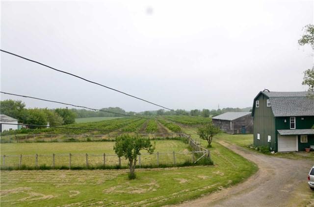 Farm at 4465 John St, Lincoln, Ontario. Image 13