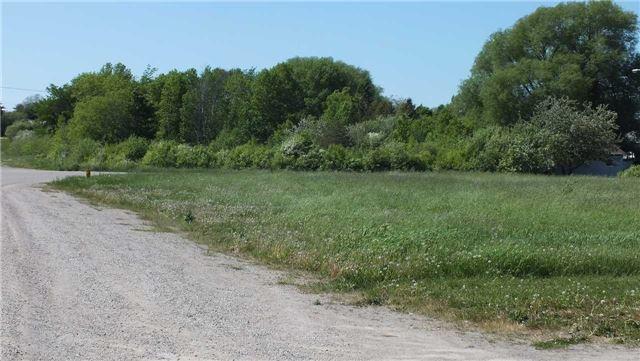 Vacant Land at 8 Vankoughnet St, Assiginack, Ontario. Image 5