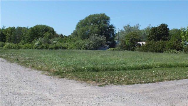 Vacant Land at 8 Vankoughnet St, Assiginack, Ontario. Image 6