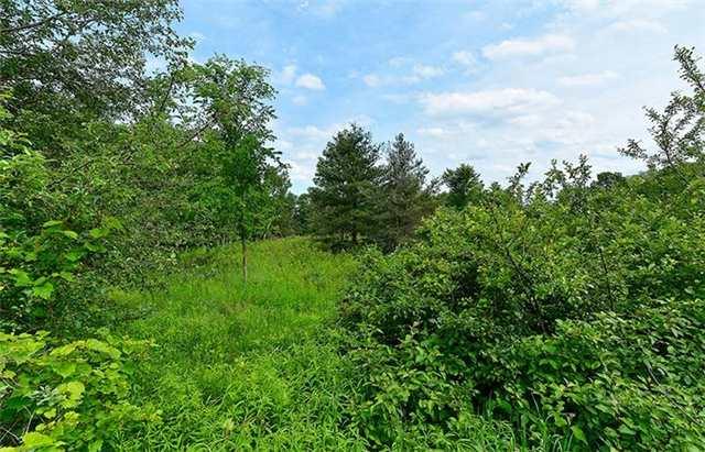 Vacant Land at 3 Laela Cres, Mulmur, Ontario. Image 3