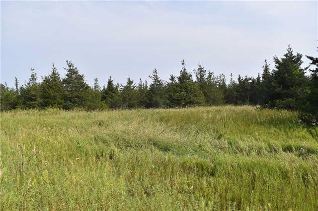 Vacant Land at 0 Airport Lane, Prince Edward County, Ontario. Image 6