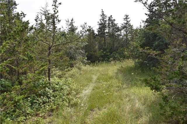 Vacant Land at 0 Airport Lane, Prince Edward County, Ontario. Image 7
