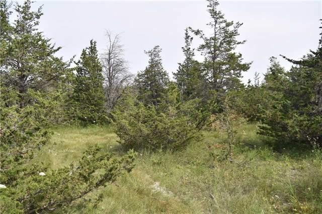 Vacant Land at 0 Airport Lane, Prince Edward County, Ontario. Image 8