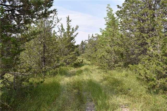 Vacant Land at 0 Airport Lane, Prince Edward County, Ontario. Image 9