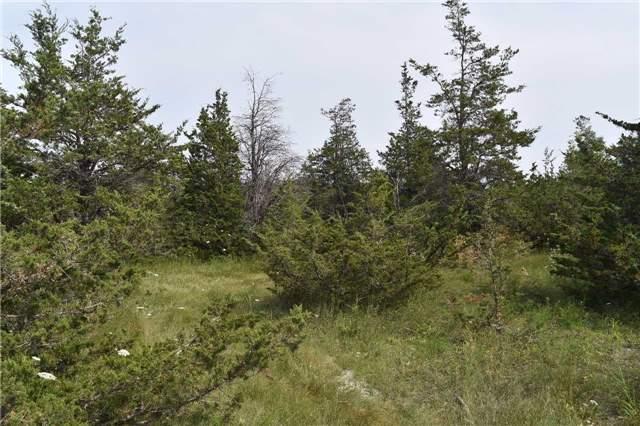 Vacant Land at 0 Airport Lane, Prince Edward County, Ontario. Image 10
