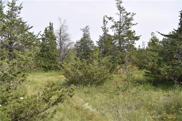 Vacant Land at 0 Airport Lane, Prince Edward County, Ontario. Image 11