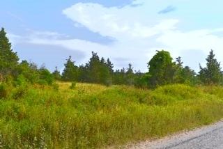 Vacant Land at 0 Airport Lane, Prince Edward County, Ontario. Image 5