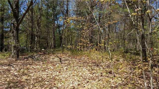 Vacant Land at 66 Shebeshekong Rd, Carling, Ontario. Image 5