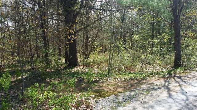 Vacant Land at 66 Shebeshekong Rd, Carling, Ontario. Image 7