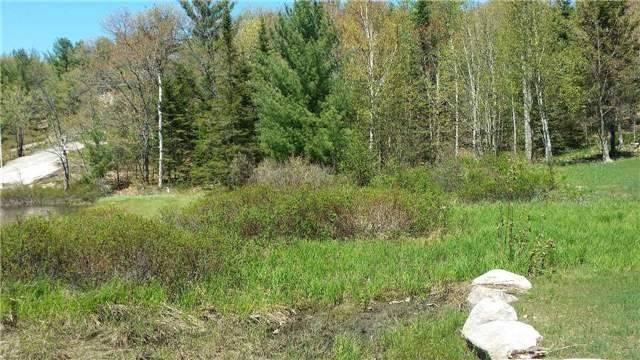 Vacant Land at 66 Shebeshekong Rd, Carling, Ontario. Image 9