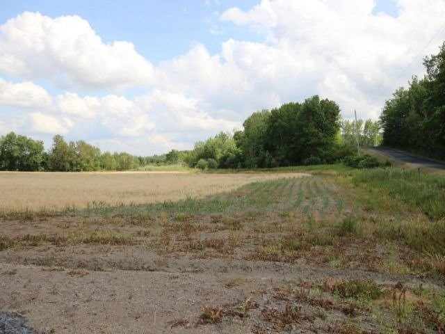 Vacant Land at 2135 Emmett Rd, Ottawa, Ontario. Image 5