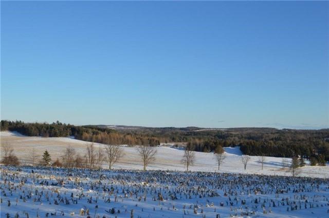 Vacant Land at Vl Ward  Lane, Alnwick/Haldimand, Ontario. Image 16