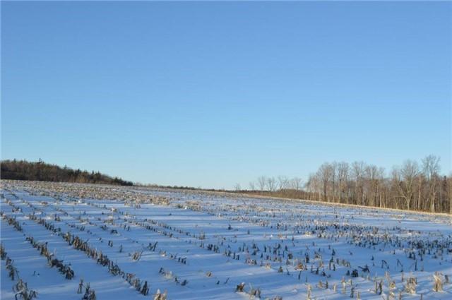 Vacant Land at Vl Ward  Lane, Alnwick/Haldimand, Ontario. Image 3