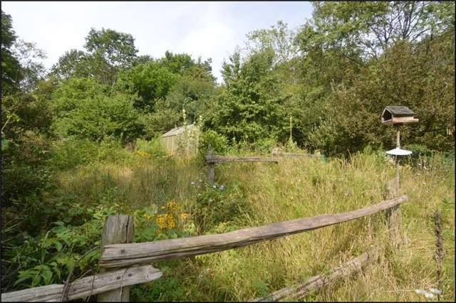 Vacant Land at 1300 Telephone Rd, Alnwick/Haldimand, Ontario. Image 11