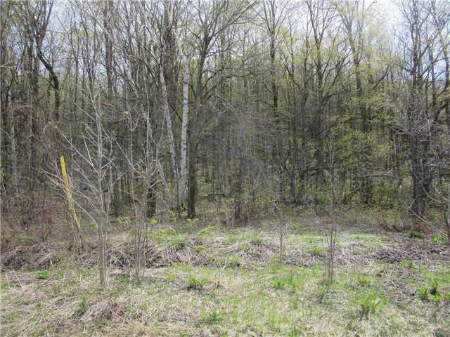 Vacant Land at N/A/ Starlight Lane, Meaford, Ontario. Image 1