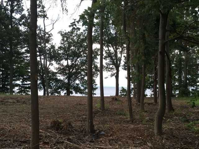 Vacant Land at 3331 Lakecrest Crt, Fort Erie, Ontario. Image 2