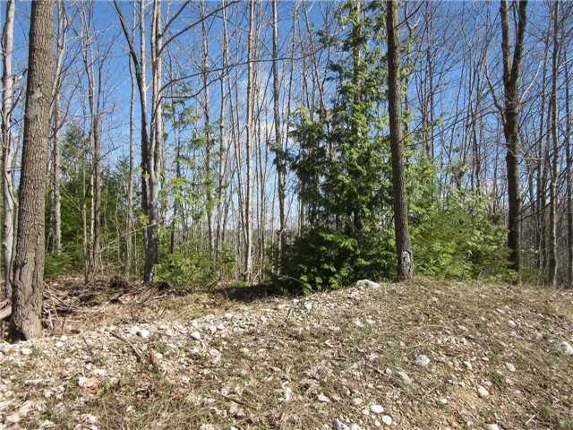 Vacant Land at N/A(#3) Concession Rd 8, West Grey, Ontario. Image 1