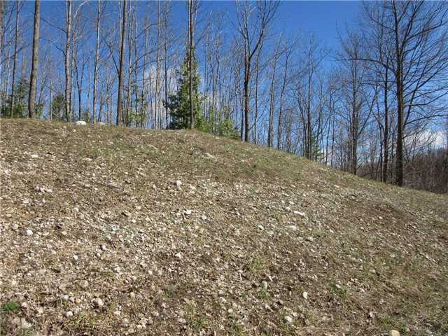 Vacant Land at N/A(#3) Concession Rd 8, West Grey, Ontario. Image 2