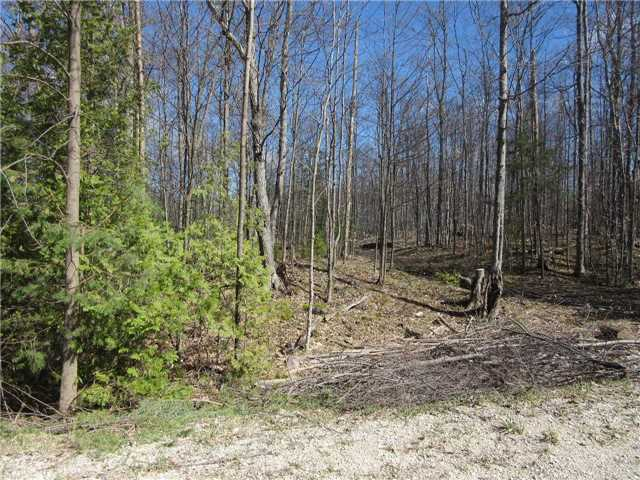 Vacant Land at N/A(#3) Concession Rd 8, West Grey, Ontario. Image 3