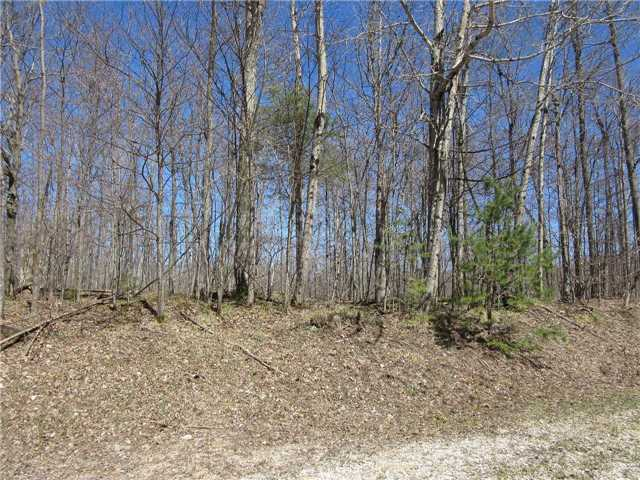 Vacant Land at N/A(#3) Concession Rd 8, West Grey, Ontario. Image 4