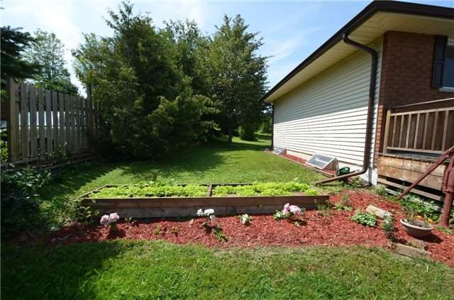 Detached at 926 Frank Hill Rd, Kawartha Lakes, Ontario. Image 9