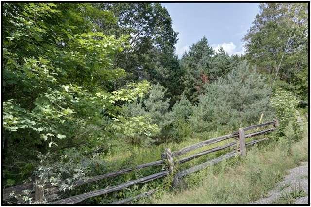 Vacant Land at Lt 12 Penryn Rd, Cramahe, Ontario. Image 6