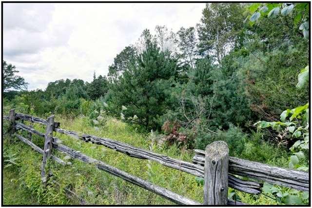 Vacant Land at Lt 12 Penryn Rd, Cramahe, Ontario. Image 8