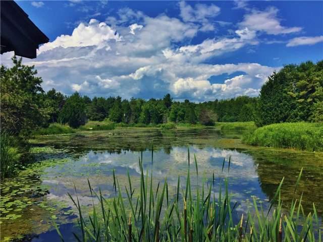 Vacant Land at . Keewatin Dr, Alnwick/Haldimand, Ontario. Image 15