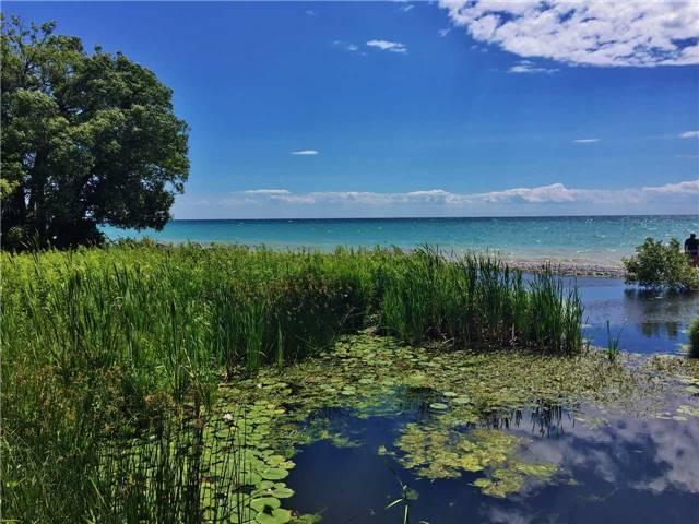 Vacant Land at . Keewatin Dr, Alnwick/Haldimand, Ontario. Image 16