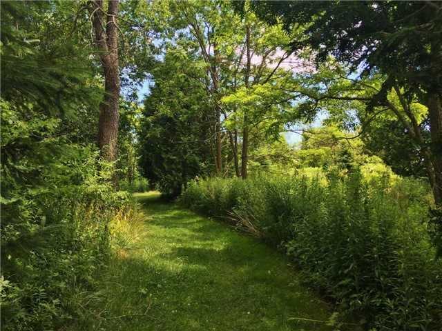 Vacant Land at . Keewatin Dr, Alnwick/Haldimand, Ontario. Image 6