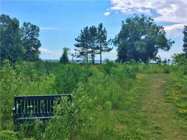 Vacant Land at . Keewatin Dr, Alnwick/Haldimand, Ontario. Image 7
