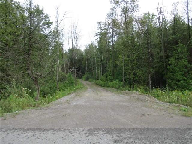 Vacant Land at 13975 Little Lake Rd, Cramahe, Ontario. Image 1