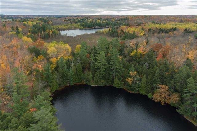 Vacant Land at Lot 1 Lake Ridge Rd, Seguin, Ontario. Image 12