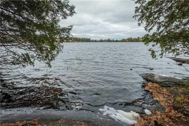 Vacant Land at Lot 1 Lake Ridge Rd, Seguin, Ontario. Image 14