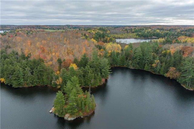 Vacant Land at Lot 1 Lake Ridge Rd, Seguin, Ontario. Image 16